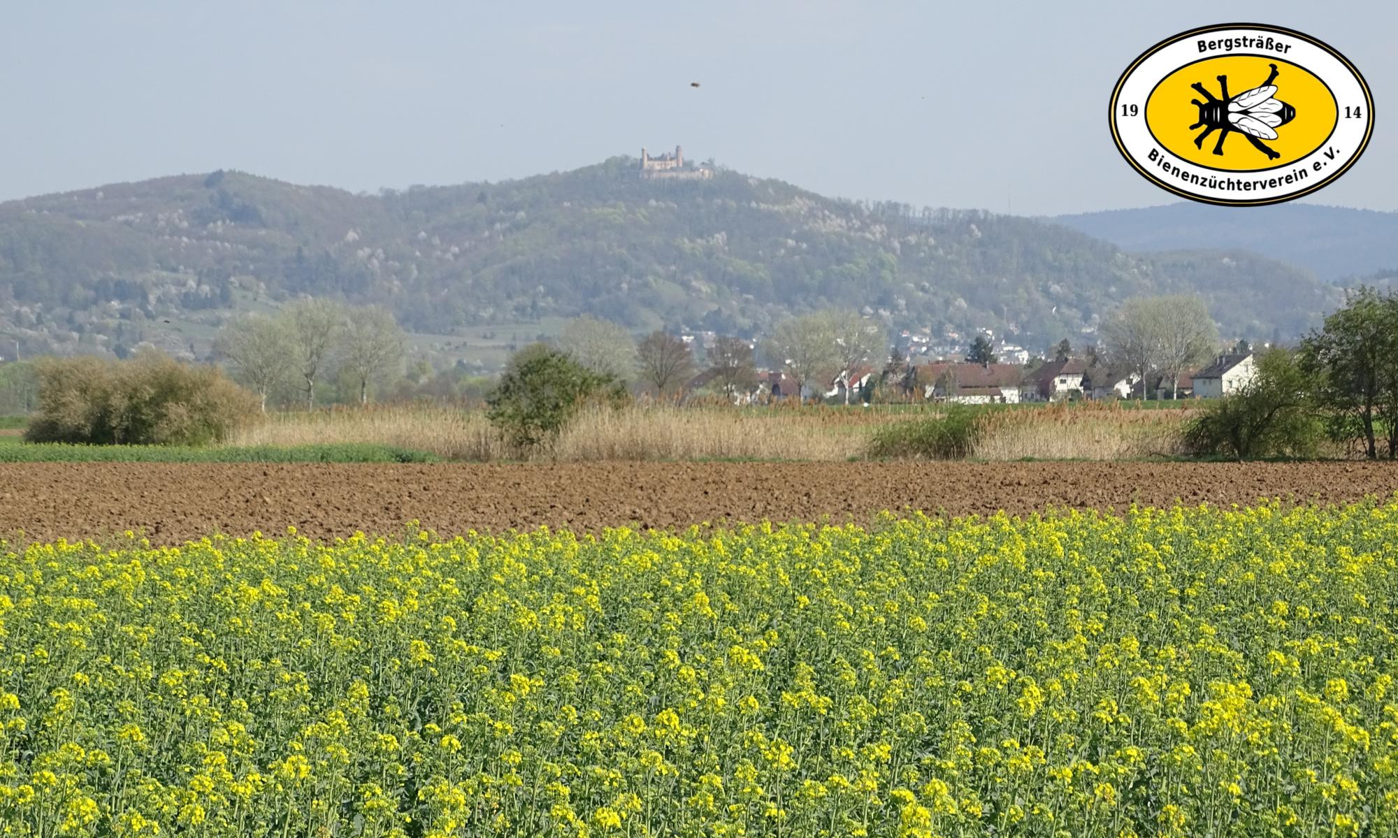 Bergsträßer Bienenzüchterverein e.V.